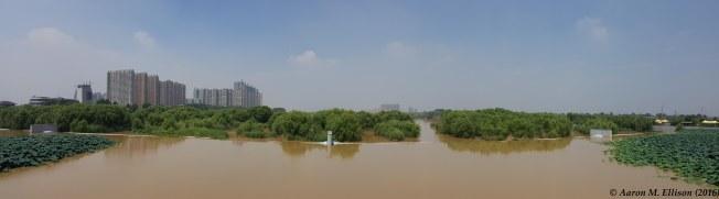 Ba qiao wetland pano-20160827-AME-122533