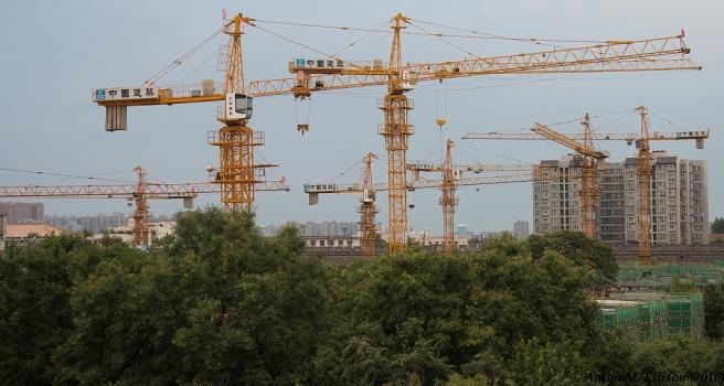 Xian cranes-20160825-AME-7328-small
