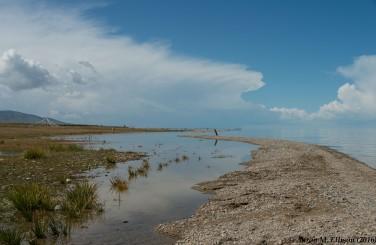 Qinghai Lake shoreline