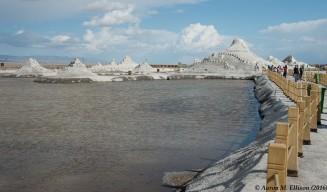 Salt sculpture garden