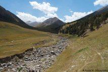 Dulan landscape
