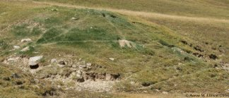 Marmot trail network