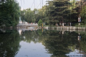 Xing Qing gardens