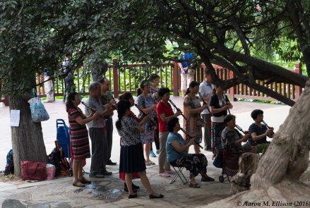 Saturday at Xing Qing Park, Xi'an