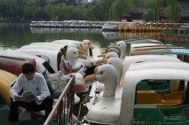 Xing Qing Park, Xi'an
