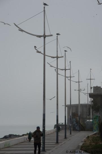 Valparaiso esplanade