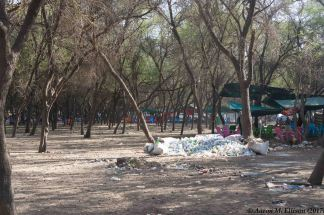 Khartoum State Forest